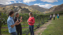 Original Wine Tour, Queenstown, Day Trips