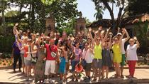 Miami to the Max Tour with Lunch, Miami, Bus & Minivan Tours