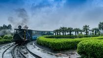 6 Days in Darjeeling & Gangtok, Darjeeling, Multi-day Tours