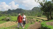 Salak Agro Eco Trekking, Nusa Dua, City Tours