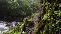 Double Decker Trek in Meghalaya, Guwahati, Hiking & Camping