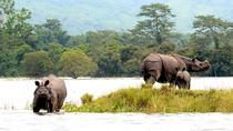 Kaziranga National Park Safari, Assam, Attraction Tickets