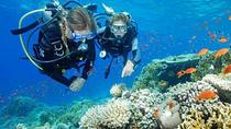 Bali Beginner Scuba Diving Experience, Nusa Dua, Other Water Sports