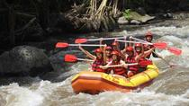 Bali River Rafting with Buffet Lunch and Transfers, Ubud, Other Water Sports