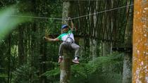 Bali Treetop Adventure Park Tour, Ubud, Obstacle Courses