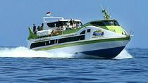 Fast Boat Transfers Bali and Gili Island, Kuta, Day Cruises