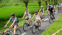 Full-Day Bali Downhill Bike Tour, Ubud, Private Sightseeing Tours