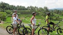 Full-Day Bali Downhill Bike Tour