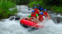 Full-Day Telaga Waja River Rafting including Buffet Lunch, Bali, White Water Rafting & Float Trips
