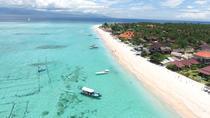 Full Day Trip: Nusa Lembongan Island, Ubud, Day Trips