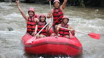 Half-Day White River Rafting from Bali, Including Buffet Lunch and Transfers, Ubud