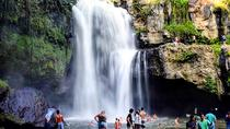 Private Bali Zoo Day Tour and Swim at Waterfall