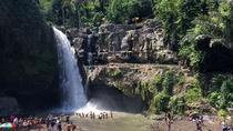 Private Full-Day Experience Bali Top Attractions, Ubud, Cultural Tours