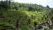 Private Tour: All about Ubud Full-Day Tour, Ubud, null