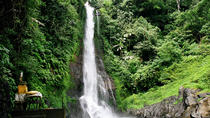 Private Tour: Natural Bali and Temples Tour, Ubud