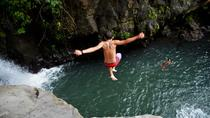Private Tour: The Waterfalls' Experience of Northern Bali Including Aling-Aling, Ubud, Private ...