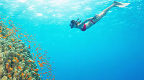 Snorkeling Experience at Blue Lagoon Bali with Lunch and Transfers, Kuta, Other Water Sports