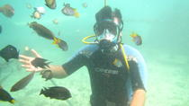 Underwater Dive Experience for Beginners in Bali, Bali, Other Water Sports