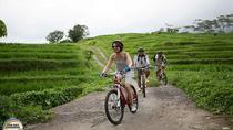 Village Cycling Tour in Bali Including Transfers and Lunch, Ubud, Bike & Mountain Bike Tours