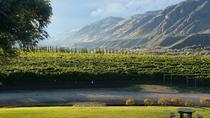 Tasty Taster Wine Tour, Kamloops, Wine Tasting & Winery Tours