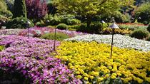 Victoria & Butchard Gardens Private Tour, Victoria, Private Sightseeing Tours