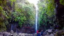 25 Fontes and Risco Waterfall, Funchal