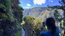 Levada dos Tornos in Boaventura, Funchal, Day Trips
