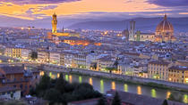 Private Minibus Transfer - Florence (FLR) (3-6 People), Florence, Airport & Ground Transfers