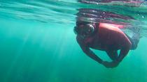 Snorkeling, Setubal District, Snorkeling