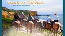 90 minute horseback trail ride, Long Beach, Horseback Riding