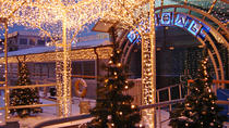 New Year's Eve 2019 River Cruise Moscow, Moscow, New Years