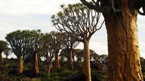 10 Days Namibia Explorer, Windhoek, Multi-day Tours