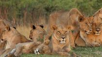 12 Days Victoria Falls & Kruger, Victoria Falls, Multi-day Tours