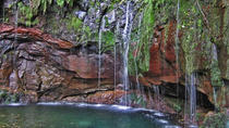 Madeira Levada Walk - Rabacal Lakes and Fountains, Funchal