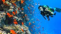 Ras Mohamed snorkeling trip from Sharm El Sheikh by Boat, Sharm el Sheikh, Day Cruises