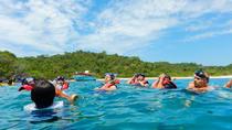 Speedy Snorkel Experience, Huatulco, Snorkeling