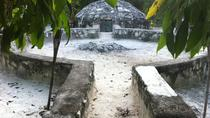 Temazcal Tour in the Riviera Maya, Playa del Carmen, Private Sightseeing Tours