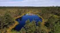 Lahemaa National Park Full Day Tour from Tallinn, Tallinn