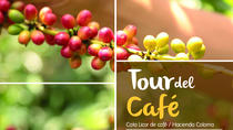 Coffee Tour - Parche Cachaco Tours, Bogotá, Bogotá, Day Trips