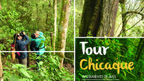 Tour Natural Reservoir Chicaque Park - Parche Cachaco Tours, Bogotá, Bogotá, Cultural Tours