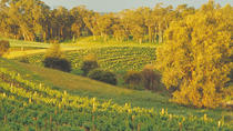 Swan Valley Private Tour, Perth, Custom Private Tours