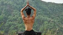 Yoga Forest Bath, Rishikesh, Yoga Classes