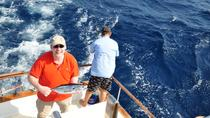 Half-Day Private Deep Sea Fishing Trip in Curaçao, Curazao