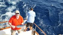Half-Day Private Deep Sea Fishing Trip in Curacao, Curacao, Fishing Charters & Tours