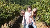 Daily Different full day group Stellenbosch wine tour - no fixed itinerary, Stellenbosch, Wine ...