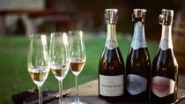 SPARKLING Sensation - Private Stellenbosch & Franschhoek Bubbly tour, Stellenbosch, Private ...