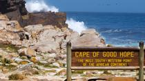 Cape Peninsula Private Day Tour, Cape Town, Helicopter Tours