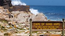 Privater Tagesausflug zur Cape-Halbinsel, Cape Town, Photography Tours