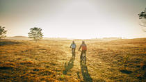 Deliblatska Desert Bike Tour, Belgrade, Bike & Mountain Bike Tours