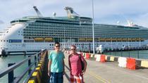 Shore Excursions: Kuala Lumpur City Tour from Port Klang Cruise Terminal, Kuala Lumpur, Ports of...